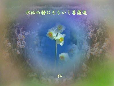 w12p100901suisennoseinimoraisibosatudo1w.jpg
